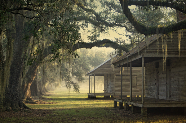 Two cabins, morning light, east row of quarters, Evergreen Plantation