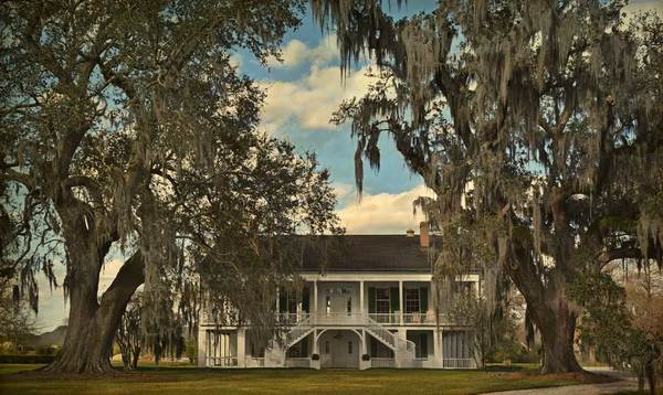 Renzi Plantation and two oaks, Thibodaux, LA